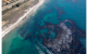 Santa Barbara Spill Underscores Why We Can't Allow Arctic Oil Drilling