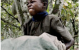 Paying for Cheap Chocolate