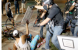 Studies: Climate Change and Rising Violence Linked
