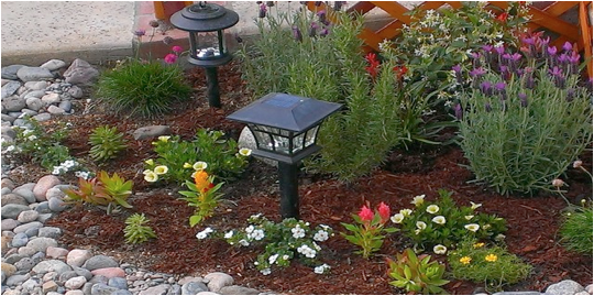 Charmant The Importance Of Drought Tolerant Gardens In LA U2026 And What You Can Do  About It