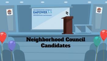 Here's How the Neighborhood Council Elections Work